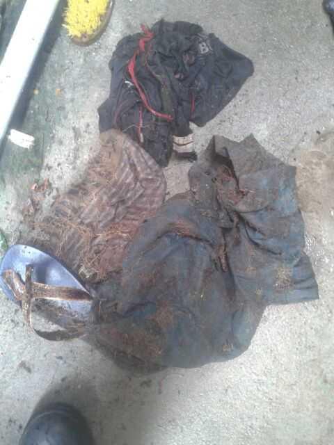 restos mortais são encontrados dentro de mata no campus da Ufam - Imagem: Via Whatsapp