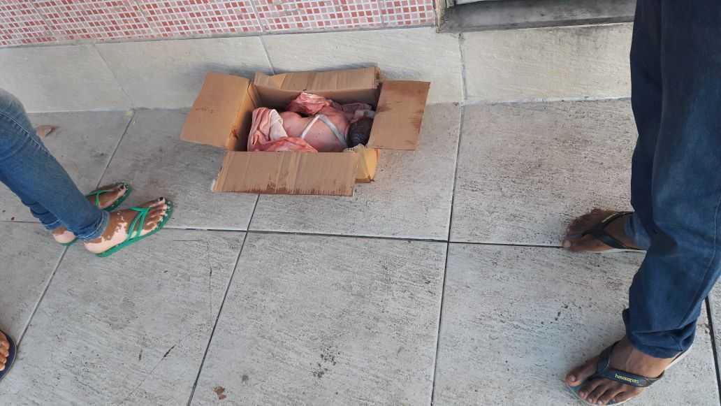 Bebê é abandonado dentro de caixa de papelão em lixeira - Imagem: Reprodução