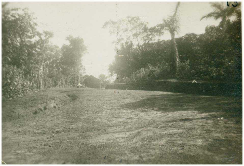 Estrada Tefé : Tefé, AM - 1950 / Foto : IBGE