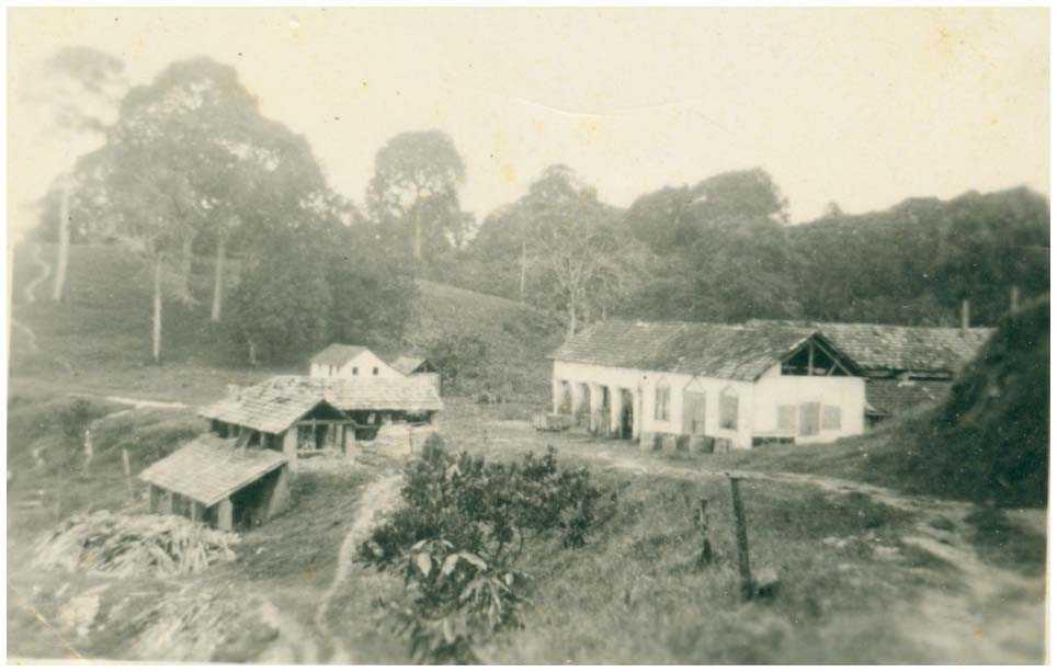 Escola de Aprendizagem Técnica e Agrícola de Missões : Tefé, AM - [19--] / Foto : IBGE