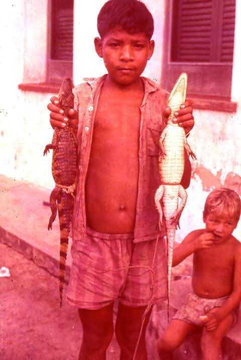 Garoto exibindo seus jacarés / Foto : Divulgação