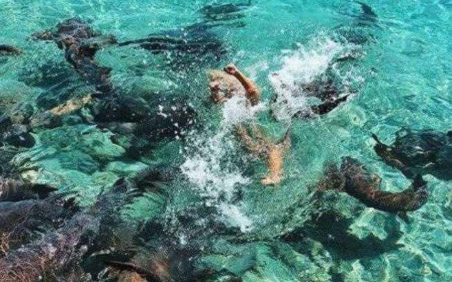 Katarina Zarutskie, que sofreu ataque de tubarões enquanto tirava foto, diz não se arrepender / Foto : Reprodução