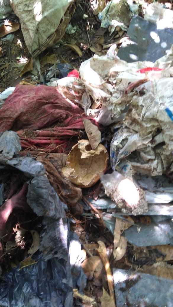 Ossada é encontrada nas proximidades do Jardim Botânico, em Manaus - Imagem: Divulgação/PM