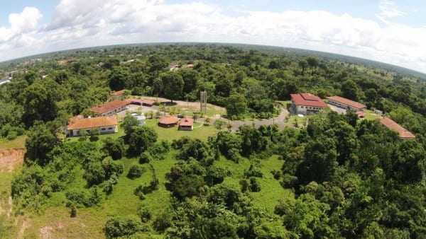 Instituto Mamirauá - Foto: Divulgação