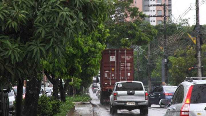 Caminhões passam irregularmente pelo lado esquerdo da via, comprometendo as árvores que os pássaros vivem. / Foto: Arlesson Sicsu/Semmas