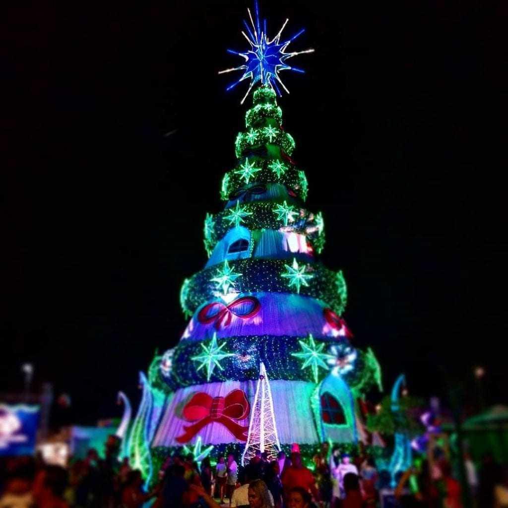 Árvore de Natal gigante tem 30m e é a maior árvore de Manaus! / Foto : Marcus Pessoa / No Amazonas é Assim