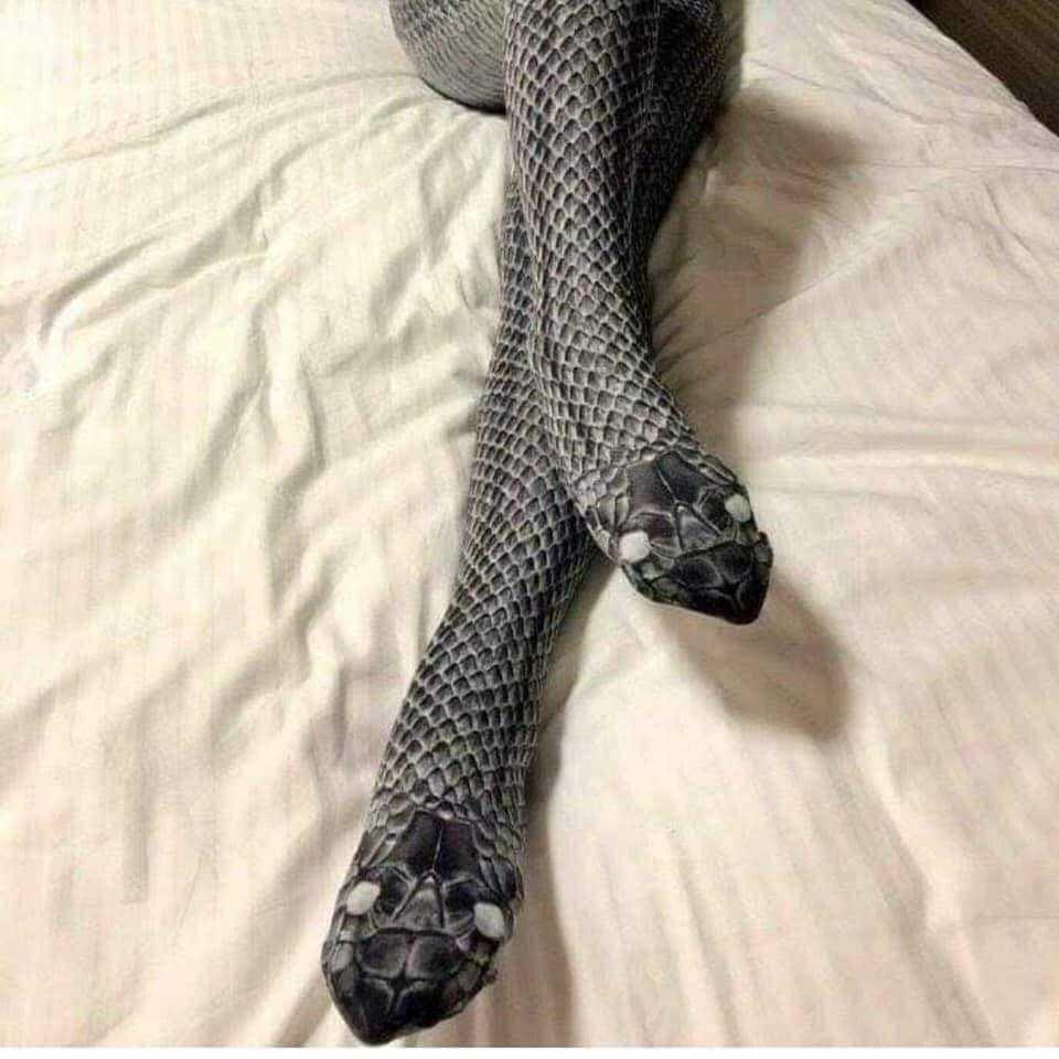 A meia calça é linda, mas dá a ideia de duas cobras / Foto : Divulgação