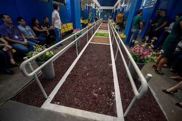 Rede municipal ganha jardim sensorial para auxiliar no tratamento de multideficiências - Imagem: Alex Pazuello / Semcom