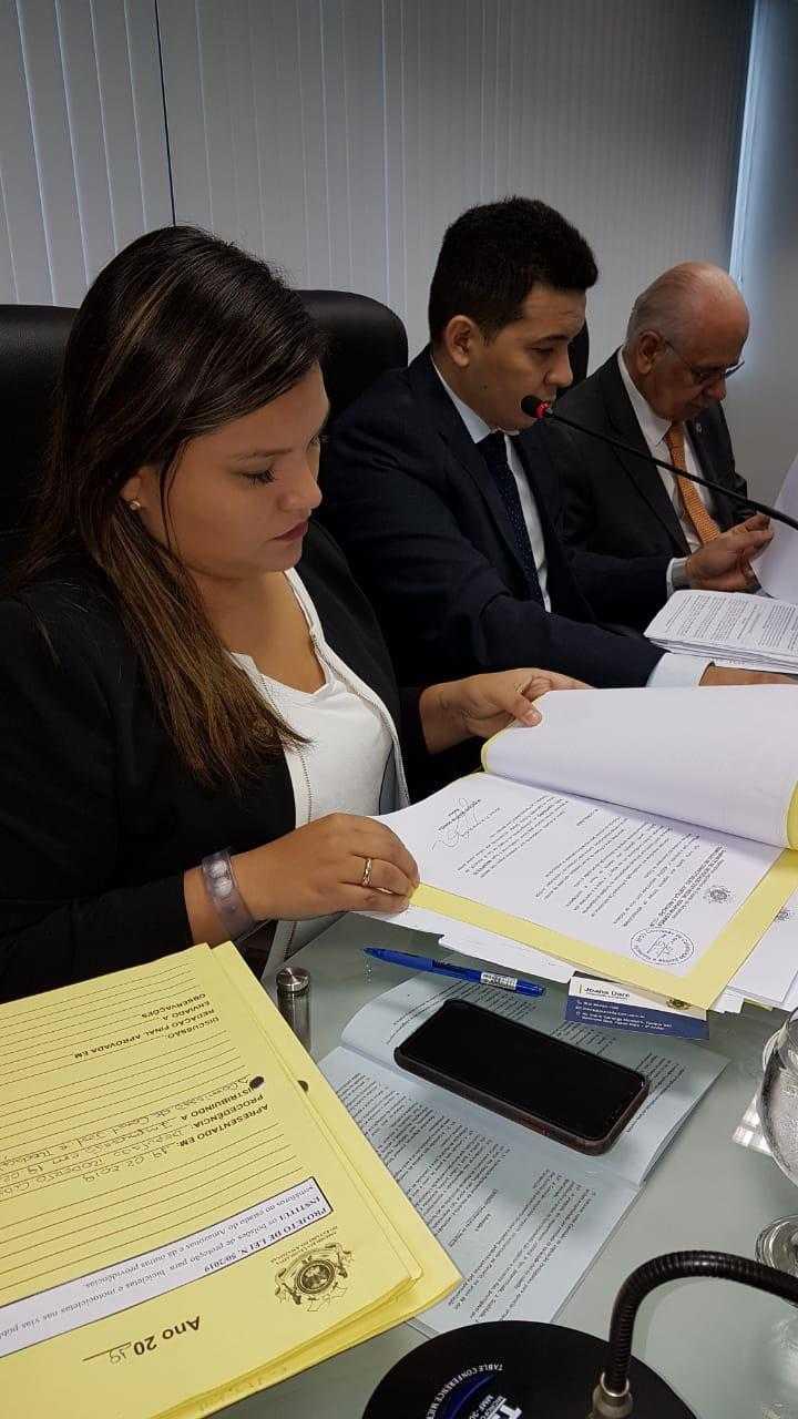 A deputada é a primeira mulher a presidir uma CPI na Assembleia. / Foto: Fábio Romão
