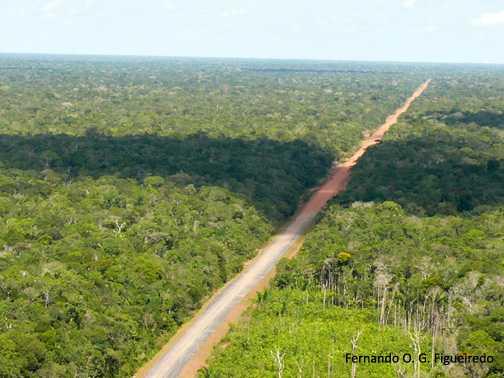 Evento vai abordar os rumos da rodovia frente ao desenvolvimento da Região. / Foto: Fernando OG Figueiredo
