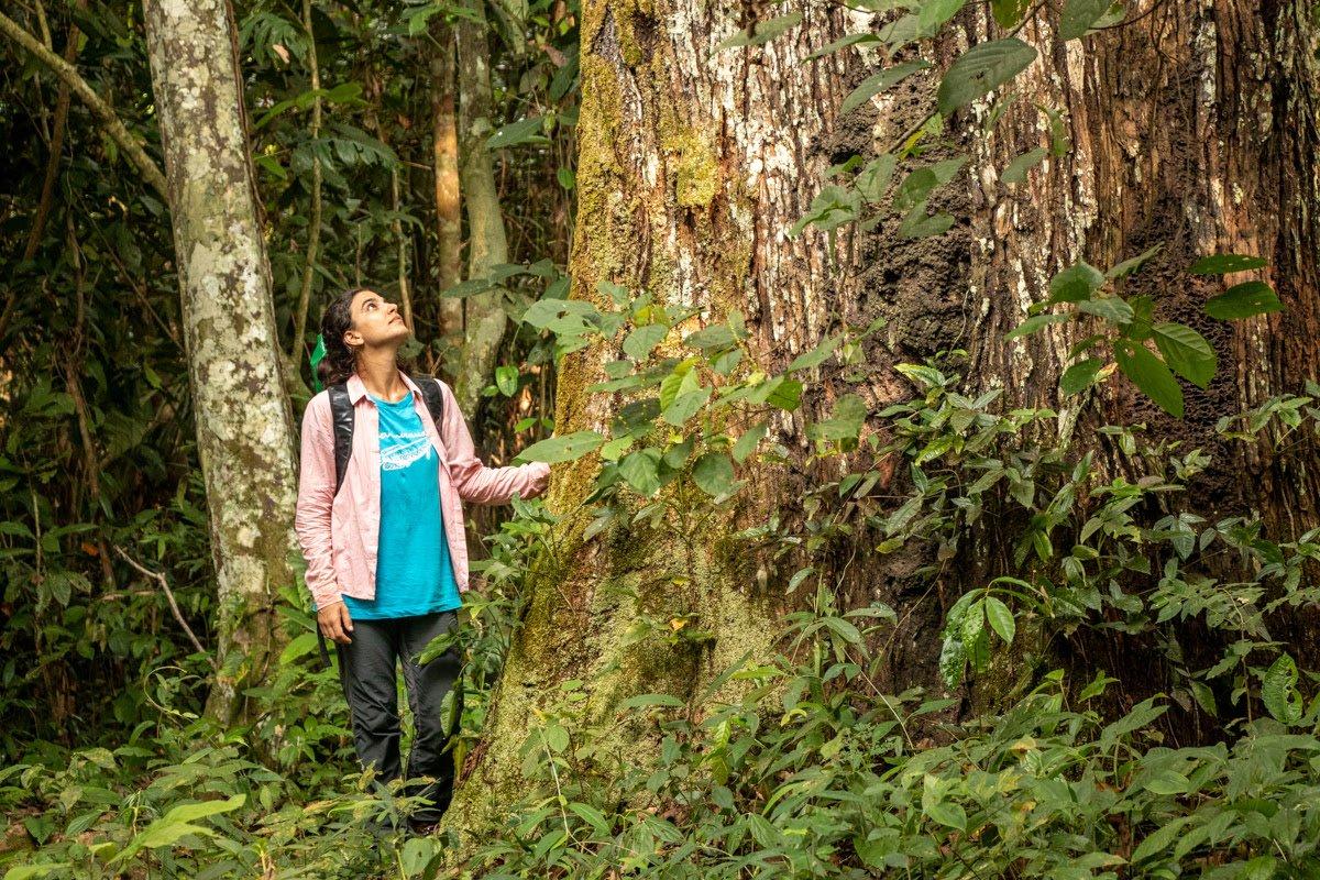 """""""É uma floresta extremamente rica e diversa, sendo que muitas das espécies que ocorrem nessa área são utilizadas aqui hoje"""", constatou Mariana (Foto: Bernardo Oliveira)"""