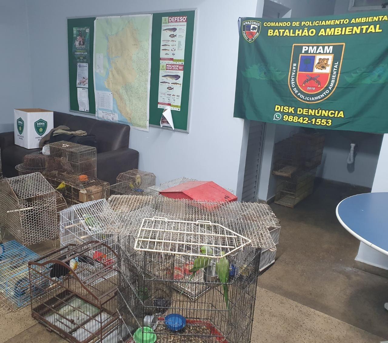 Comando e Batalhão Ambiental, desativa cativeiro e apreende mais de cem animais silvestres e domésticos/ FOTO: Divulgação/PMAM