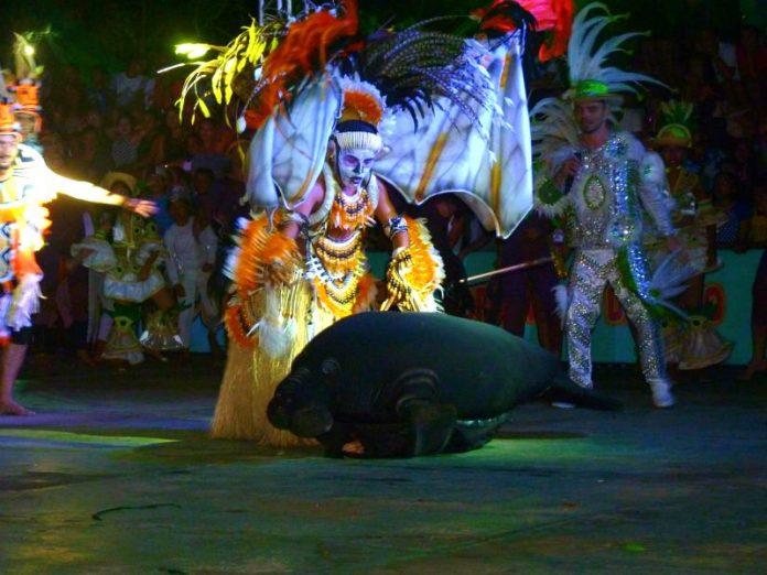 Confira a programação do XXII Eco Festival do Peixe Boi de Novo Airão