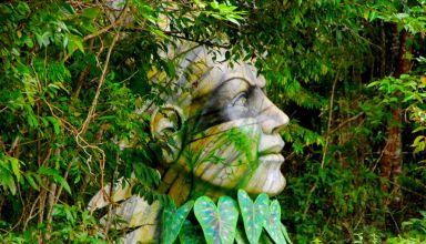 Parque Sumaúma / Foto: Ricardo Oliveira/Secom