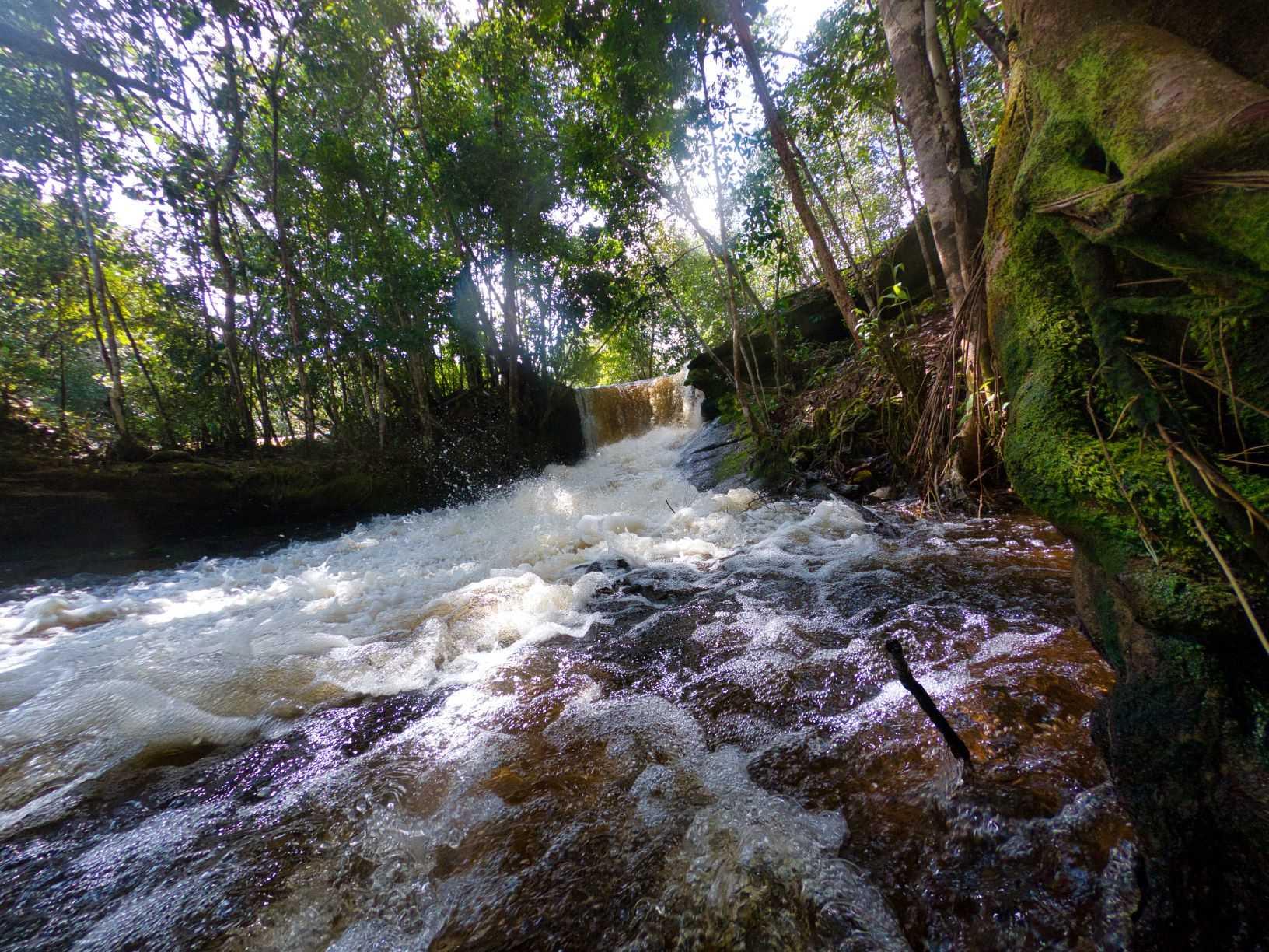 Cachoeira da Arara / Foto: Ivo Brasil/Amazonastur