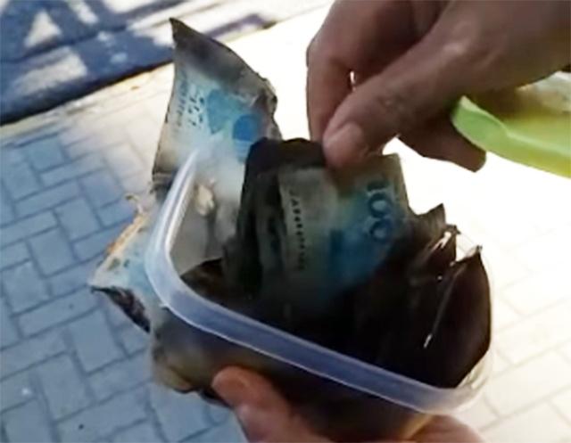 Mulher recebe o auxílio emergencial e teve a brilhante ideia de esterilizar o dinheiro no microondas