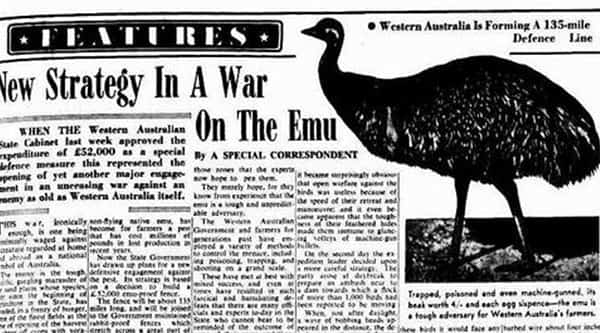Jornal da época destacando novas estratégias para a Guerra contra os Emus / Foto : Divulgação